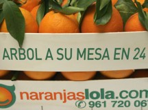 "Naranjas Lola: ""Estábamos en internet antes que Google"""